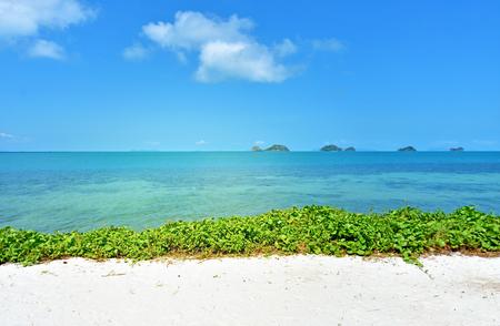 Wonderful tropical beach in Samui Thailand