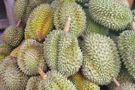Durian king of fruit  in the Thai market