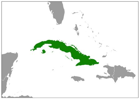 Cuba map on gray base green view