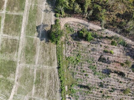 Aerial photography drone countryside agriculture and forest