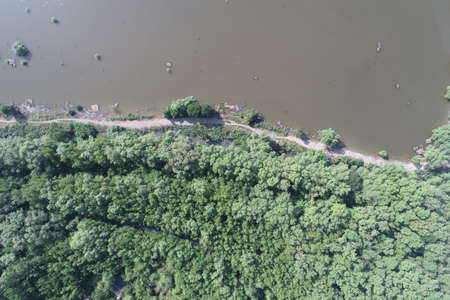 mangrove forest aerial view photography drone
