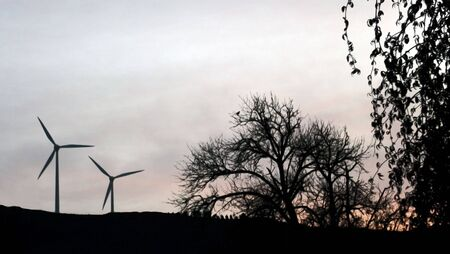 megawatt: two windmill generators producing a few megawatt, coexisting with birds and trees at sunset