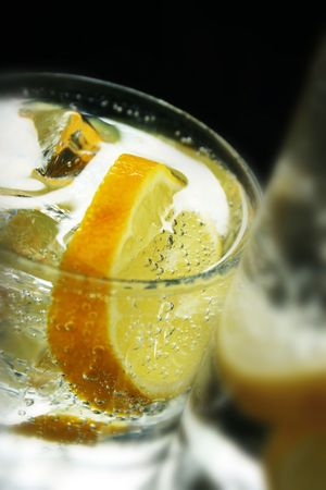 Lemon and Ice Cubes in Soda Water Stock Photo - 488687