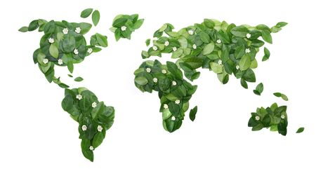 Fresh green leaves in the shape of World on a white background.