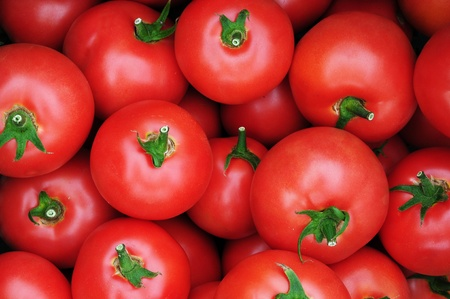 Close up of many fresh red tomatoes big fruit type.  Stock Photo
