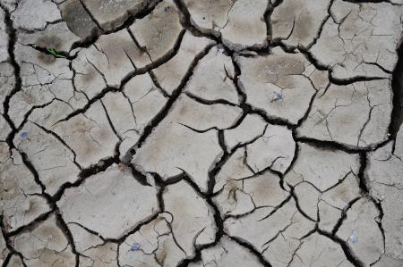Rachadura do solo em �poca seca, efeito vermifuga��o global Banco de Imagens