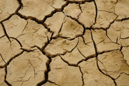 Crack soil on dry season, Global worming effect   photo