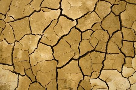 Craque do solo na esta��o seca, efeito worming global