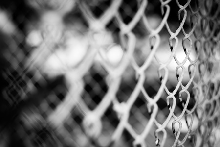 rusty wire: Abstract background. Blurred of old rusty wire fence with a low depth of field. (black and white image)
