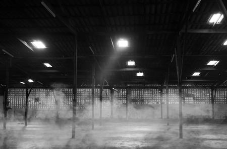 abandoned warehouse: Abandoned warehouse. Black and white image. noise scene.