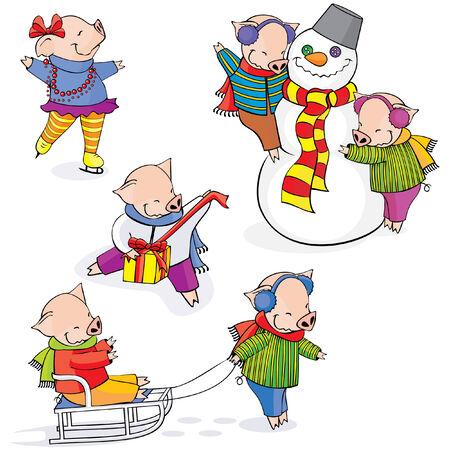 piglets: Funny piglets.   Illustration