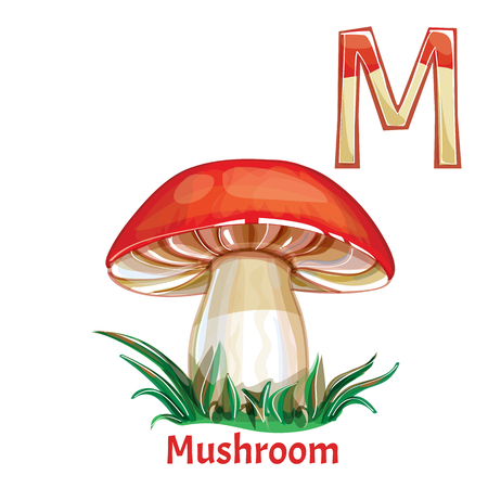 english letters: Vector alphabet letter M, coloring page. Mushroom