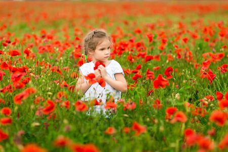 Beau petit enfant cueillant des fleurs dans un champ de coquelicots par temps ensoleillé.