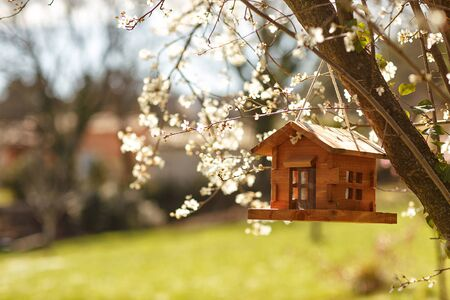 Wood cabin birdhouse for the birds in the tree in the spring. Care for the animals. Crafts with children.