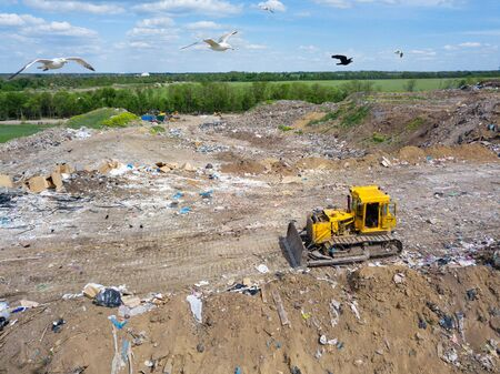 yellow tractor and gulls on dump in a field. garbage collection, environmental disaster. pollution of the environment. trucks carrying waste. Фото со стока