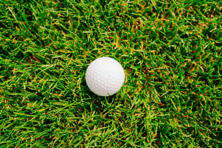 golf ball on the green grass. country club for golfers.