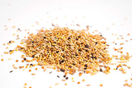 parrot feed on a white background. pet shop.