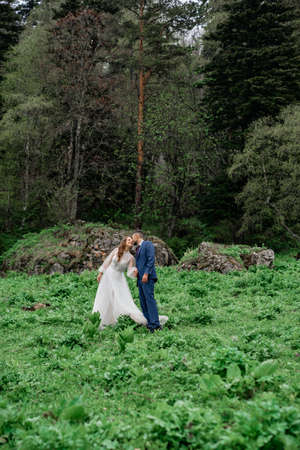 the bride and groom in wedding clothes walk through the clearing holding hands. Foto de archivo