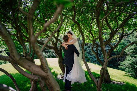 beautiful newlyweds hug by the trees in the park.bride and groom on a walk Foto de archivo