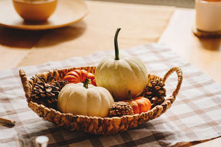 basket with small decorative white and orange pumpkins and cones.