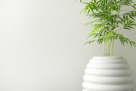 closeup of ceramic tree pot and wall interior Imagens