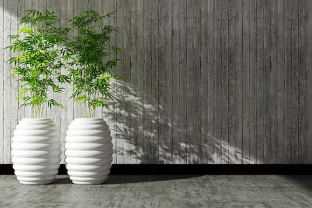 luz natural: pot árbol y muro de hormigón interior decorado