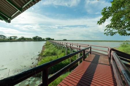 pontoon: pontoon bridge with blue sky landscpae