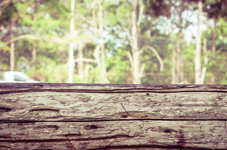 foreground: Wood foreground and tree forest Stock Photo