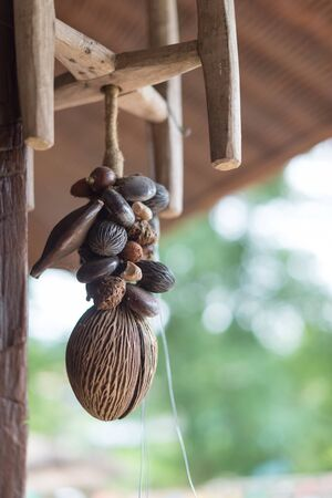 Closeup of craft made from fruit seed for hanging mobile Stok Fotoğraf