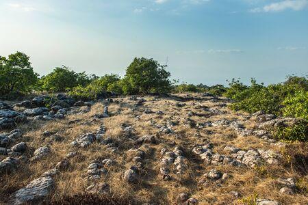 Stone field landscape with blue sky, Phu Hin Rong Kla National Park.