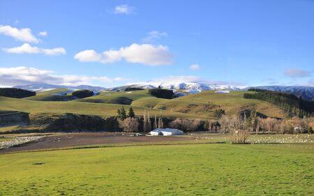 field in winter photo