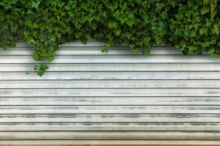garage door: garage door with ivy background Stock Photo