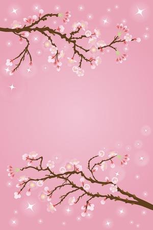 fleurs de cerisiers: cerise fond fleurs