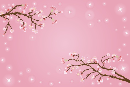 admissions: cherry blossoms background