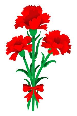 claveles: Clavel
