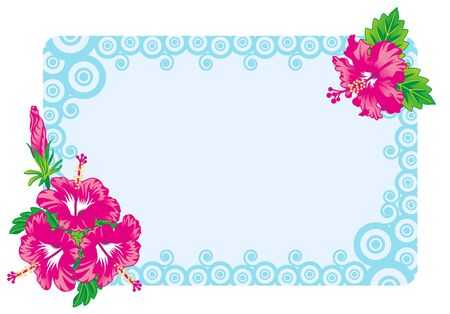 Hibiscus Frame Vector