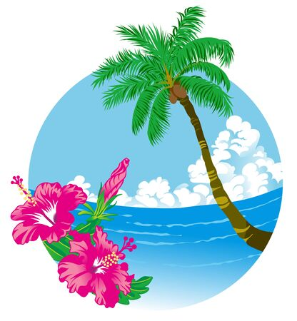 coconut trees: Tropical Summer Illustration