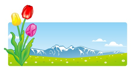 snow field: Tulips and Mountain View Illustration