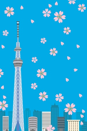 tokyo tower: Tokyo Sky Tree and Cherry blossom, Vertical composition Illustration