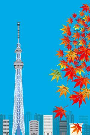tokyo sky tree: Tokyo Sky Tree in autumn,sunny day , Vertical