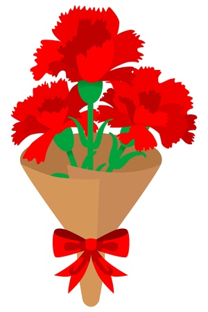 carnations: carnations Bouquet