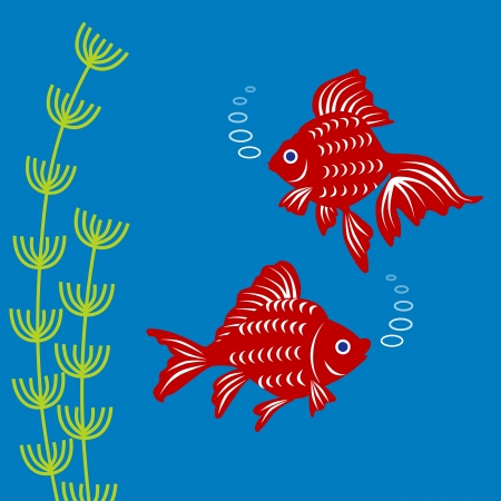 tail fin: Goldfish and water plants