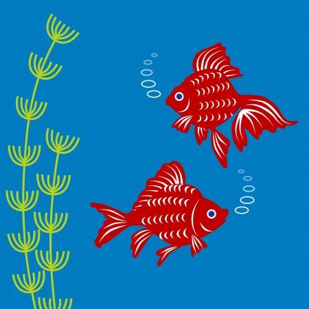 plantes aquatiques: Goldfish et de plantes aquatiques