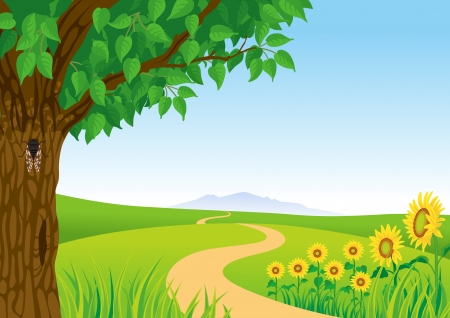 cicada: Summer Landscape, Sunflower and Cicada