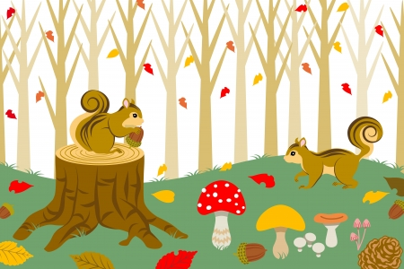 stumps: Squirrel Harvesting in autumn  forest