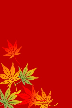 japanese maple: Maple background,Vertical