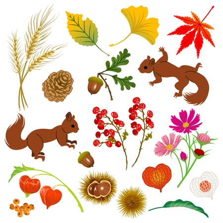 秋の素材、絶縁  イラスト・ベクター素材