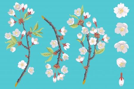 cherry blossom tree: Cherry Blossom Branch set