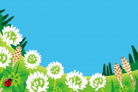 four leafed clover: Flores silvestres en primavera Prado