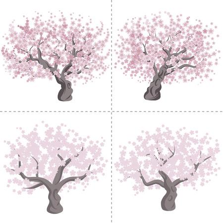 Cherry tree set Vector